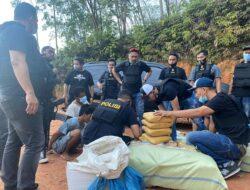 Tujuh Karung Paket Ganja Kembali Diamankan Polisi