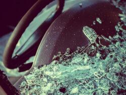 Truk Ditumpangi 57 Orang Kecelakaan, 19 Penumpang Dikabarkan Tewas